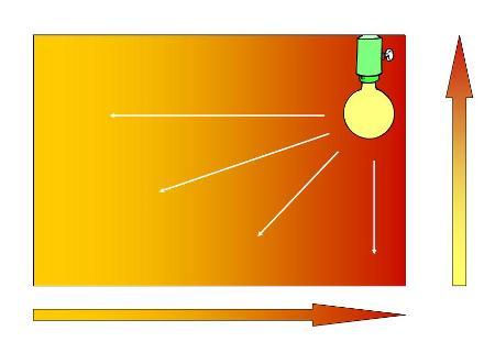 Concetto di gradiente termico: la temperatura all'interno del terrario dimininuisce sia in senso orizzontale che verticale man mano che ci si allontana dalla fonte di calore.